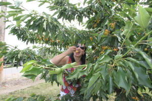 Kelowna (July 2012) - 12