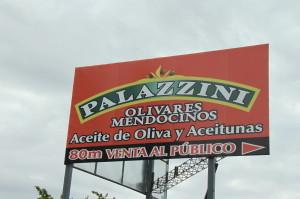 Palazzini Olive Oil Factory (Mendoza) - 01