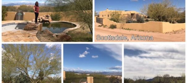 Auction #1 - Scottsdale